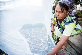 Mosquito nets in Uzbekistan